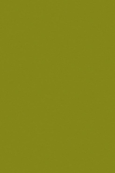 verde aceituna pagina.jpg