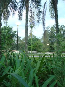 Jardim Tagaste