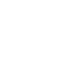 mold-icon (1) white.png