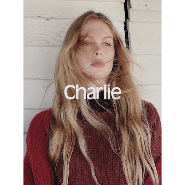 AMV7 - CHARLIE C.mp4