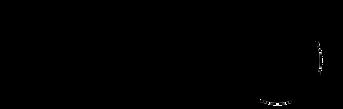 Black Melon Logo final.png