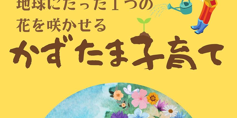12/15 わが子だけのたった1つの花を咲かせる<かずたま子育て>