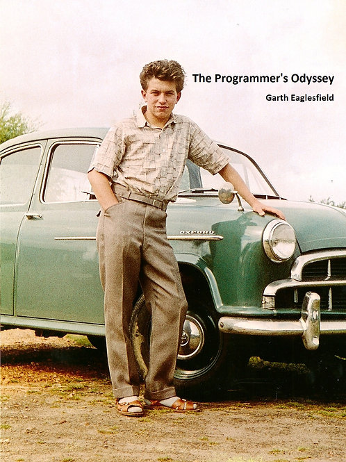 The Programmer's Odyssey (Deluxe print)