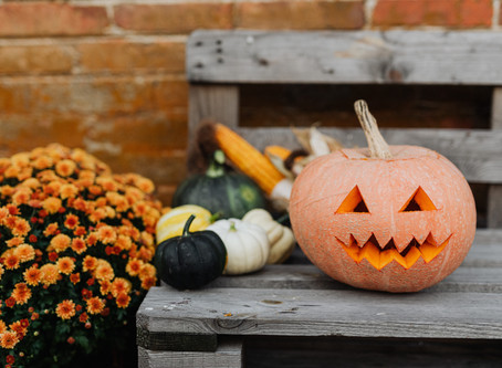 Pumpkins: Fun facts and history