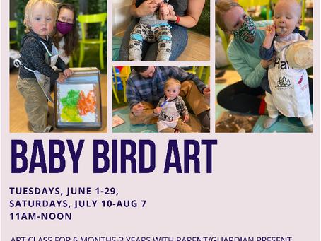 Discount Code for Baby Bird Art Classes