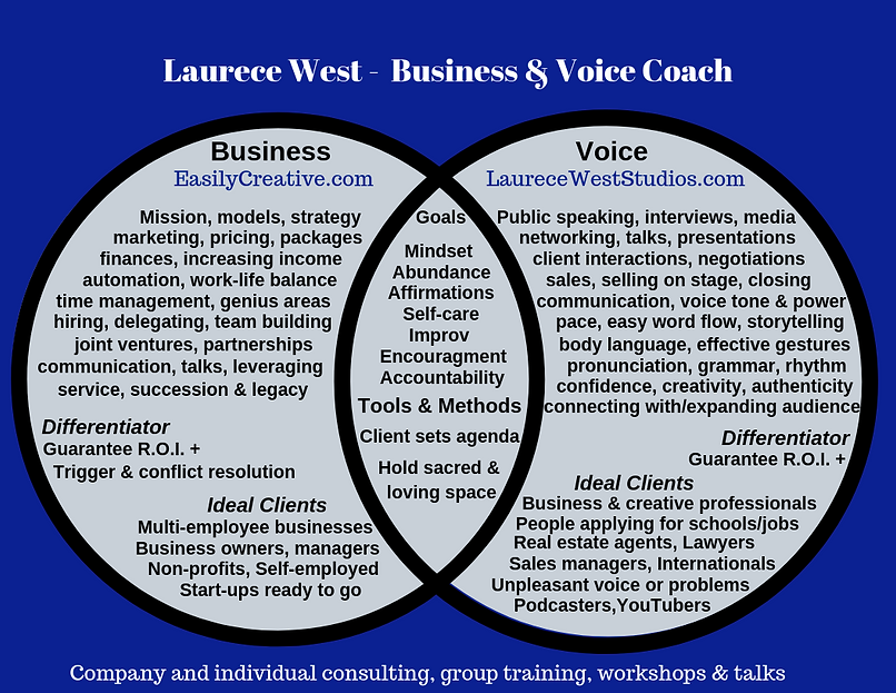 Laurece Business and Voice Consultant-Co
