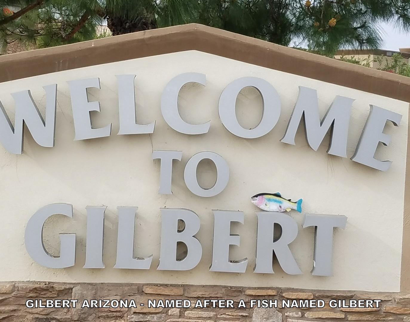 FishGilbert in Gilbert 2018.03.jpg