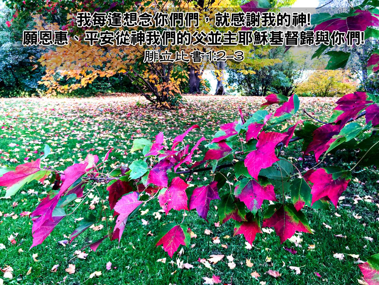Elaine Cheng Blog Phil 1v2-3.jpg