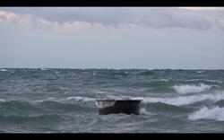 Screen Shot 2020-03-06 at 1.47.18 PM