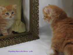 Chaynikoty Man in the Mirror