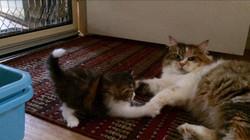 Zarli playing with her mum Jaromira