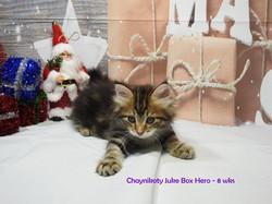 Chaynikoty Juke Box Hero