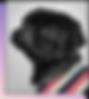 줄무늬 셔츠를 입고 있는 작은 검정색 퍼그 강아지
