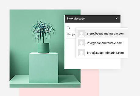 Custom business email address examples and plant in green pot.