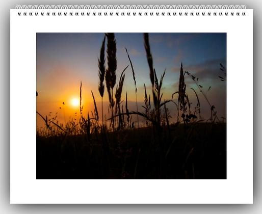MG Photography Calendar