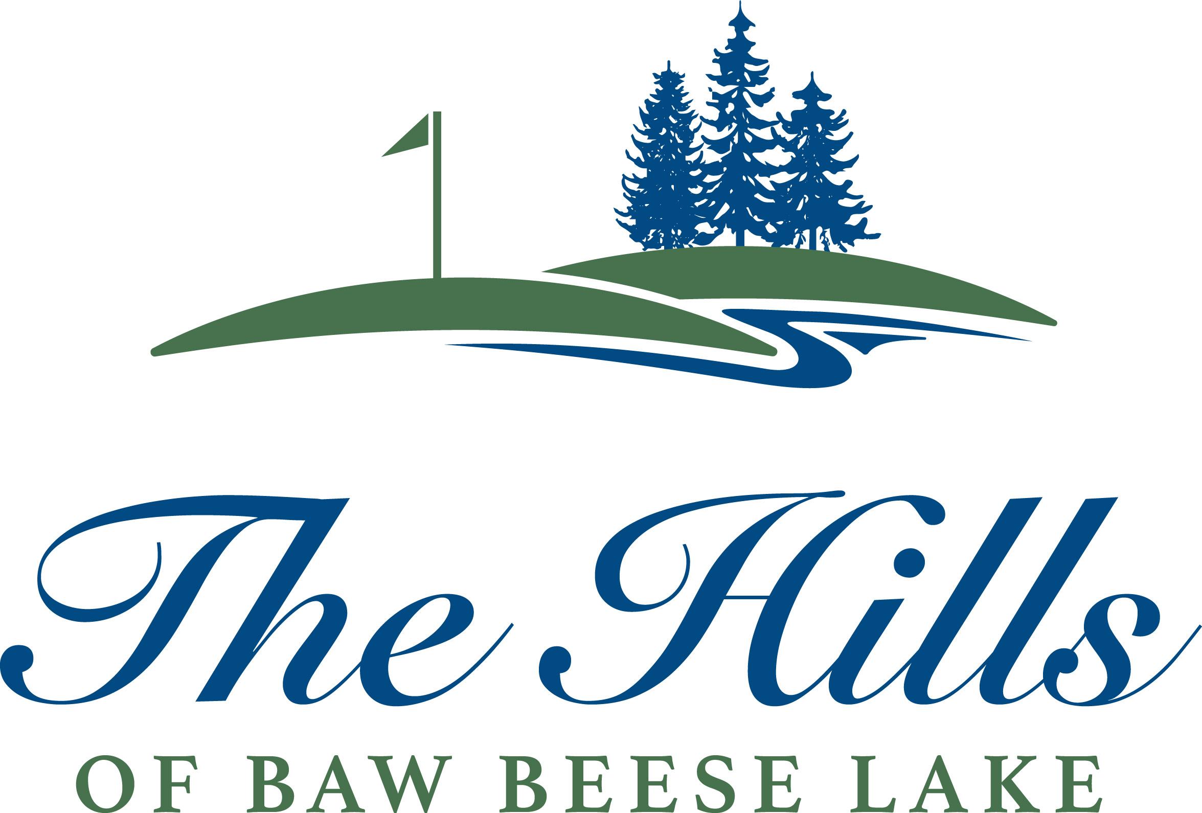 The Hills Logo Design