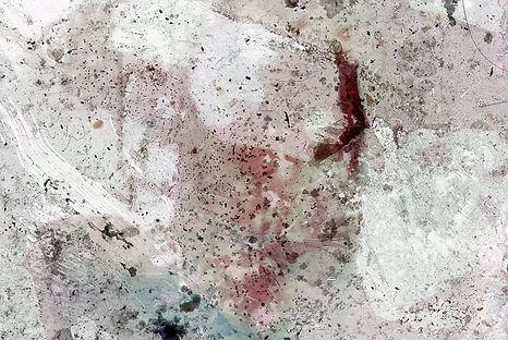 pastel spores