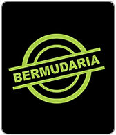 A_Bermudaria_SP.jpg
