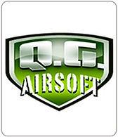 A_logo_QG.jpg