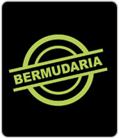 A_Bermudaria_SP