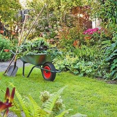 seau-chariot-brouette-jardin_edited.jpg
