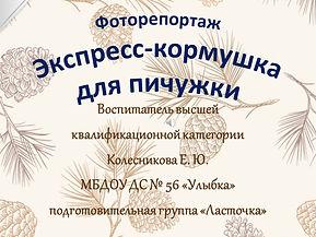 1 МЕСТО КОНКУРС ЖИВАЯ КОРМУШКА 2015.jpg