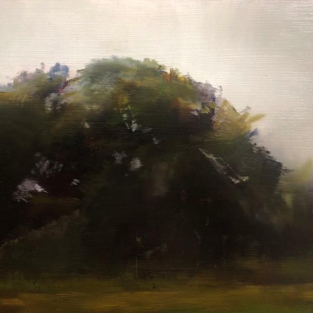 Oak Study
