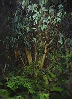 thumbnail__DSC0028.jpg