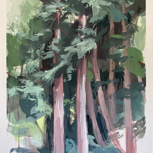 Cascade Canyon Redwoods (SOLD)