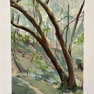 Old Mill Park, Mill Valley (SOLD)