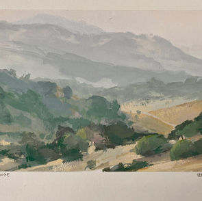 Novato Smoke (SOLD)
