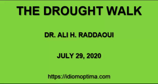 THE DROUGHT WALK