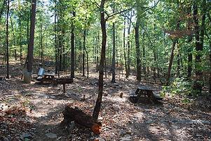 Camping Area 3.jpg