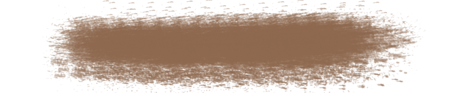 line_brown5.png