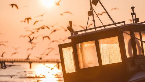 Fischkutter auf der Insel Usedom