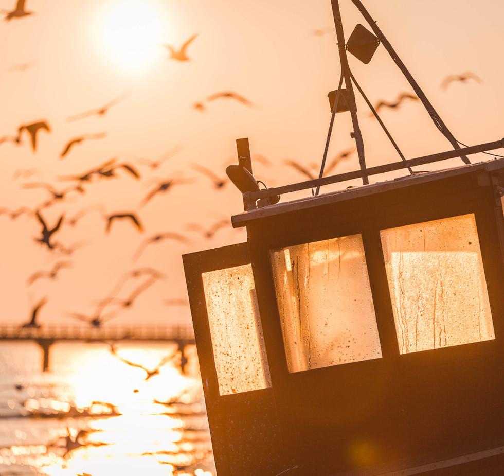 Insel Usedom | Ahlbeck