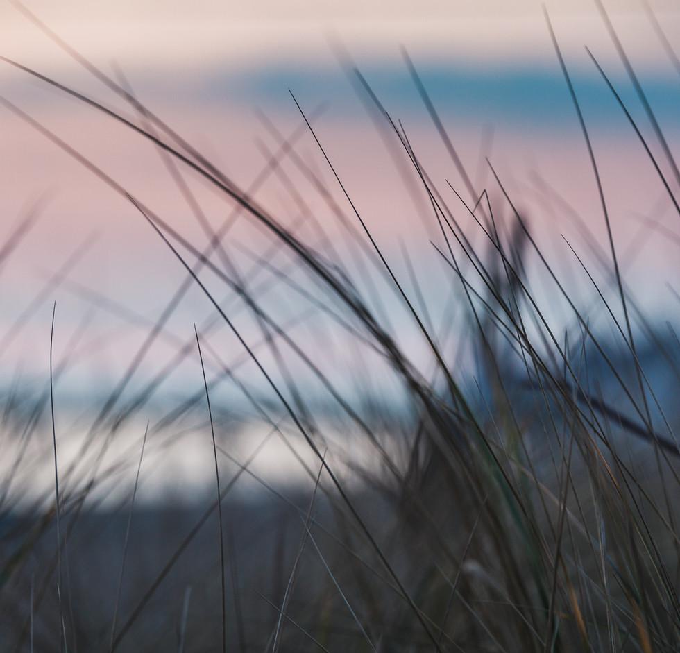 Halbinsel Fischland Darss-Zingst