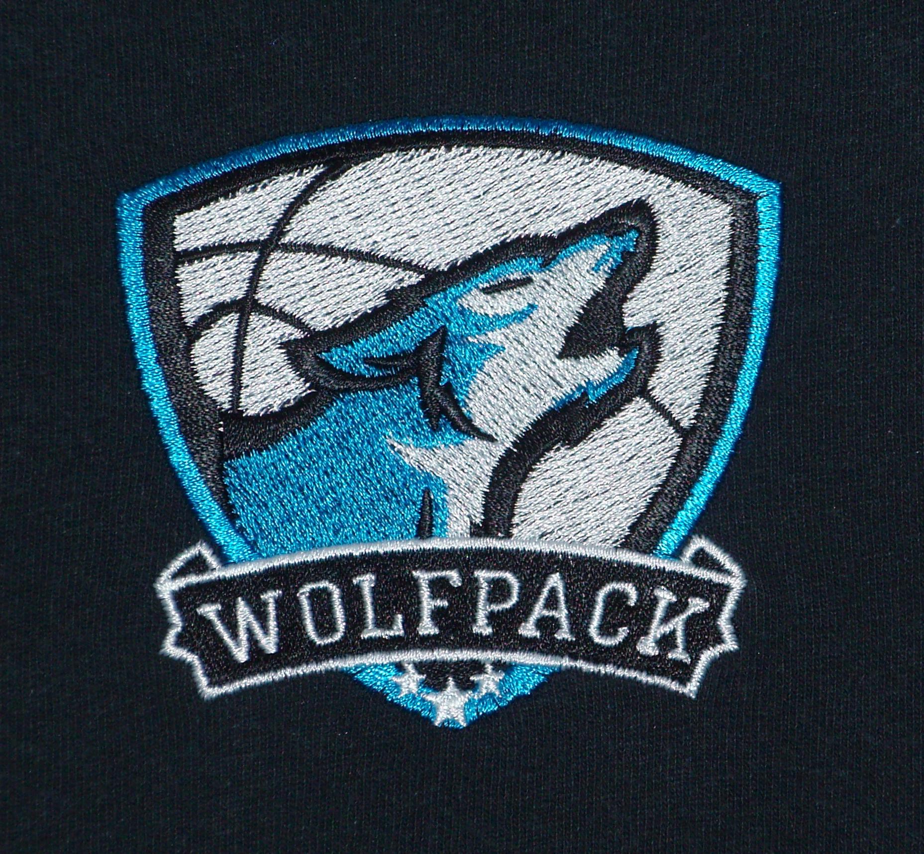 Logo for basketball team