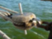 block-and-tackle-rigging-sail-dew-ship-s