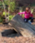 natural-playground-Milwaukee-playground-ideas