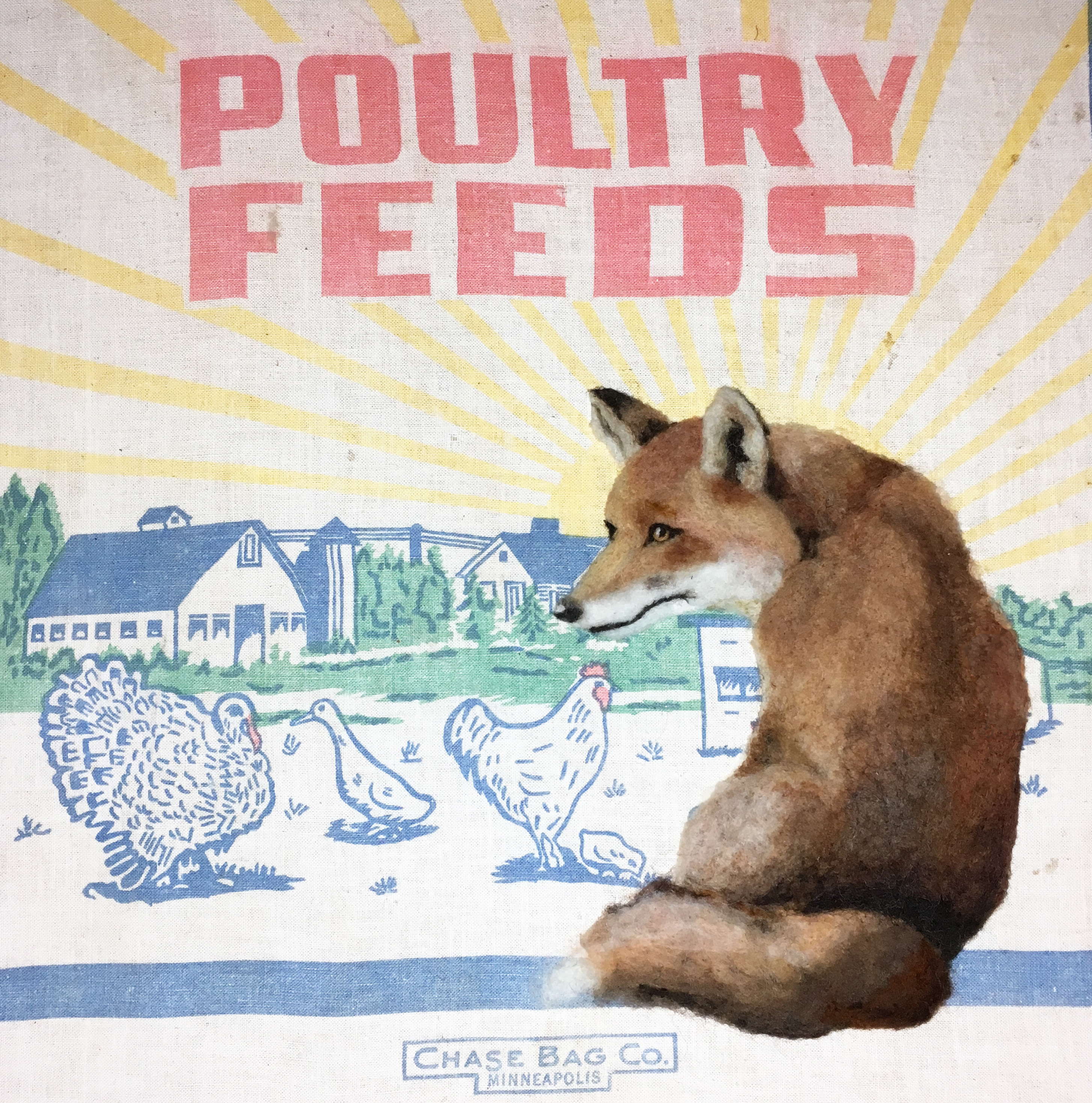 "POULTRY FEEDER 14"" x 14"""