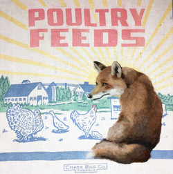"""POULTRY FEEDER 14"""" x 14"""""""