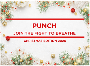 PUNCH NEWSLETTER Christmas (2).png