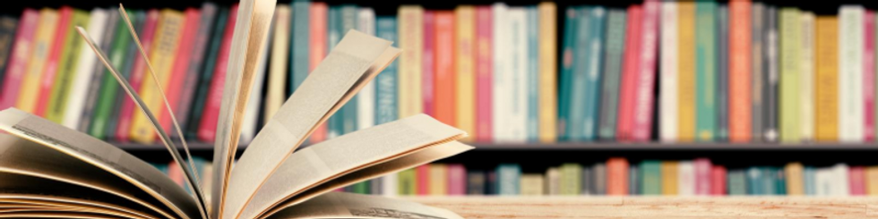 Copy of books banner.png