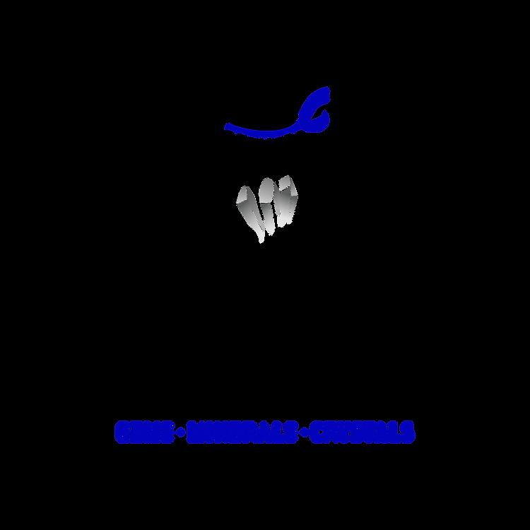 The Rock Ninja Logo-01.png