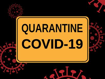 Becoming a Quarantine Champion