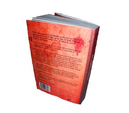Boekomslag De engeltjesmaaksters