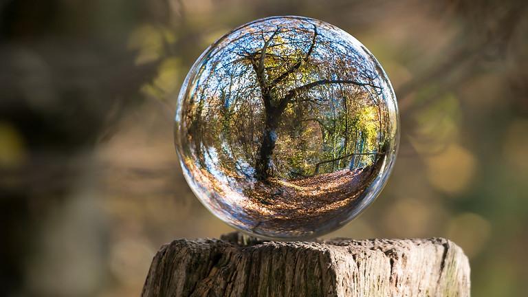 ¿Qué es la Economía Circular? Parte 2. La Economía Circular y el Cambio Climático