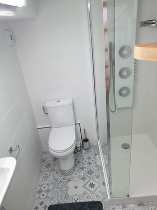 Ruisseau Suite Shower Room Toilet.jpg