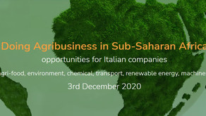 DOING AGRIBUSINESS IN SUB-SAHARAN AFRICA